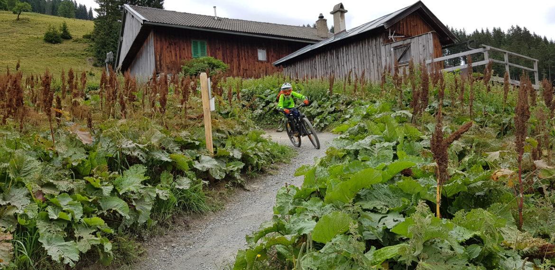 3 dni na rowerze 30.08-01.09