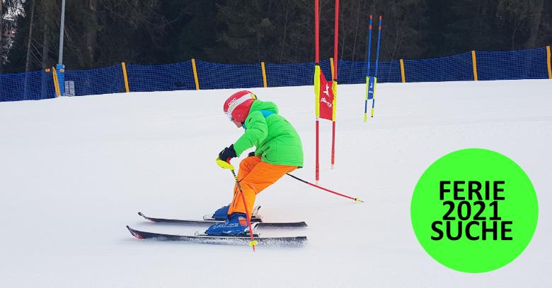 Ferie zimowe/szkolenia 2021